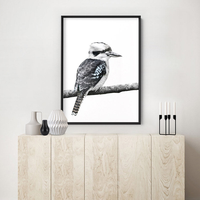 Kookaburra on Branch - Art Print, Stretched Canvas or Framed Canvas Wall Art, Shown inside a frame