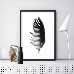 Feather Black & White III - Art Print, Stretched Canvas or Framed Canvas Wall Art, Shown inside a frame