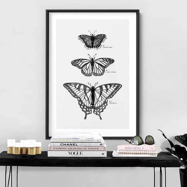 Butterflies Entomology / Mourning cloak, Viceroy & Eastern Tiger Swallowtail - Art Print, Stretched Canvas, or Framed Canvas Wall Art