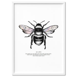 Honey Bee with Holo Wings - Art Print, Stretched Canvas, or Framed Canvas Wall Art