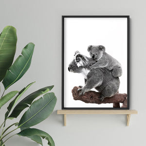Koala Mother and Baby - Art Print, Stretched Canvas or Framed Canvas Wall Art, Shown inside a frame