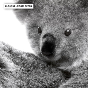 Koala Mother and Baby - Art Print, Stretched Canvas or Framed Canvas Wall Art, Close up View of Print Resolution