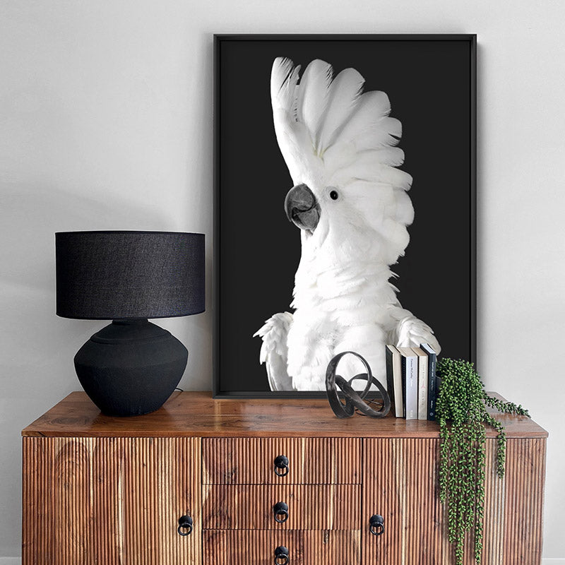 White Cockatoo on Charcoal Background - Art Print, Stretched Canvas or Framed Canvas Wall Art, Shown inside a frame