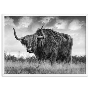 Highland Cow Landscape III B&W - Art Print, Stretched Canvas, or Framed Canvas Wall Art