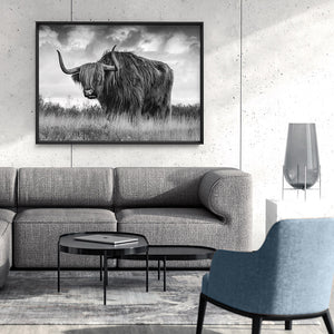 Highland Cow Landscape III B&W - Art Print, Stretched Canvas or Framed Canvas Wall Art, Shown inside a frame