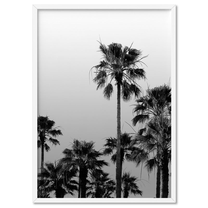 California Tropical Palms Black & White - Art Print, Stretched Canvas, or Framed Canvas Wall Art