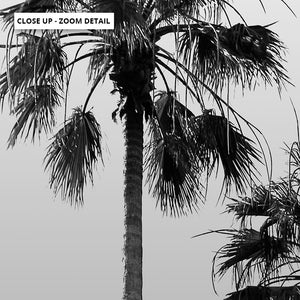 California Tropical Palms Black & White - Art Print, Stretched Canvas or Framed Canvas Wall Art, Shown framed in a room mockup