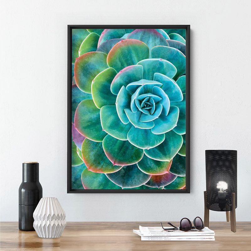 Succulent with Rainbow Tips - Art Print, Stretched Canvas or Framed Canvas Wall Art, Shown inside a frame