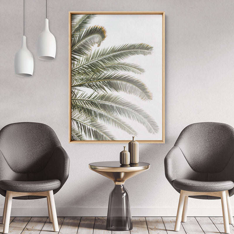 Palm fronds catching the sun - Art Print, Stretched Canvas or Framed Canvas Wall Art, Shown inside a frame