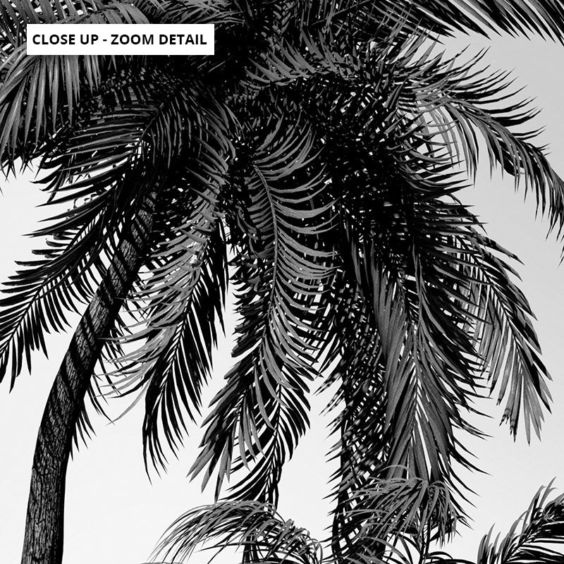 Palms in the Wind Monochrome - Art Print, Stretched Canvas or Framed Canvas Wall Art, Close up View of Print Resolution