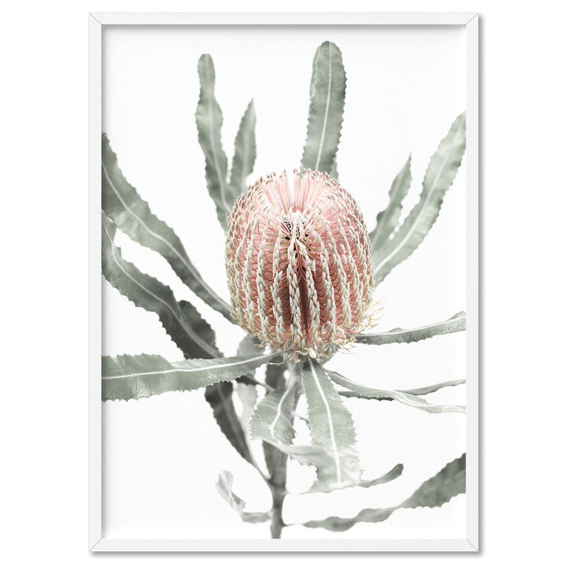 Banksia Pastels I - Art Print, Stretched Canvas, or Framed Canvas Wall Art