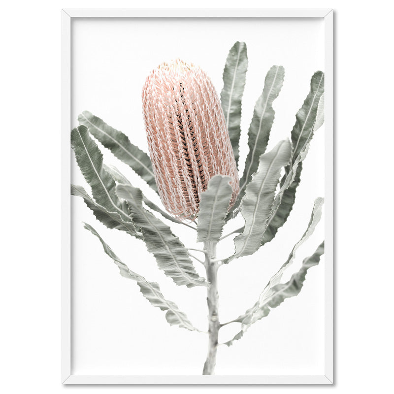 Banksia Pastels II - Art Print, Stretched Canvas, or Framed Canvas Wall Art