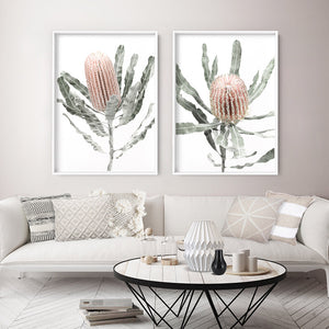 Banksia Pastels II - Art Print, Stretched Canvas or Framed Canvas Wall Art, Shown framed in a room mockup