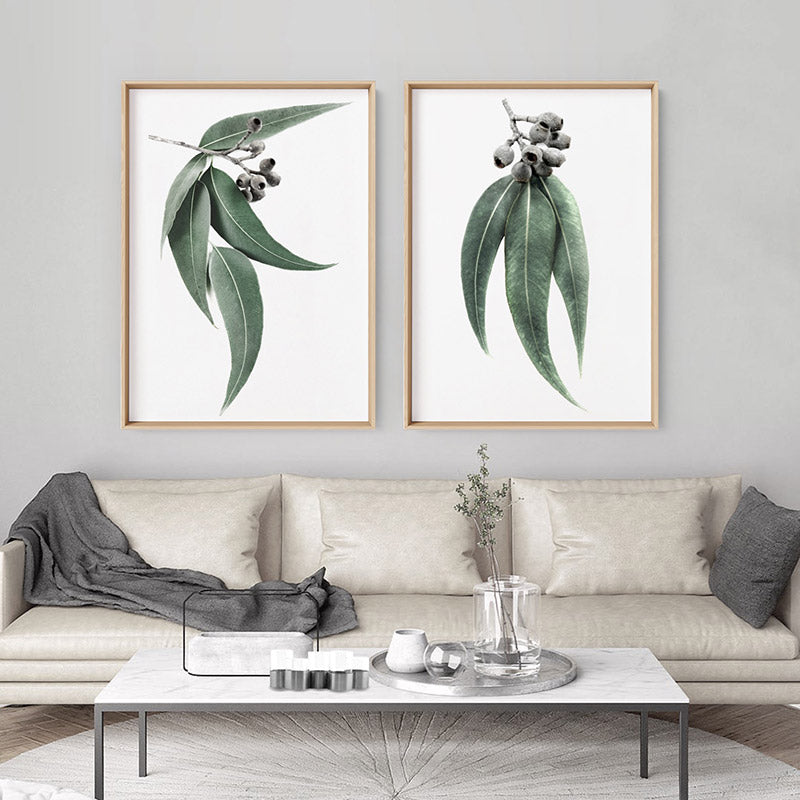 Eucalyptus Leaves & Gumnuts II - Art Print, Stretched Canvas or Framed Canvas Wall Art, Shown framed in a room mockup