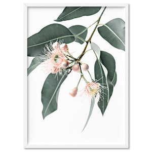 Flowering Eucalyptus in Blush - Art Print, Stretched Canvas, or Framed Canvas Wall Art