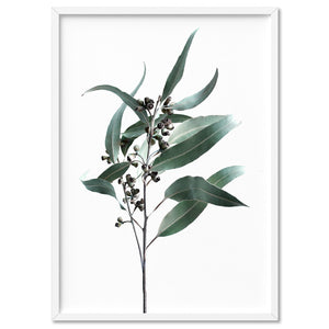 Dried Eucalyptus Leaves II - Art Print, Stretched Canvas, or Framed Canvas Wall Art
