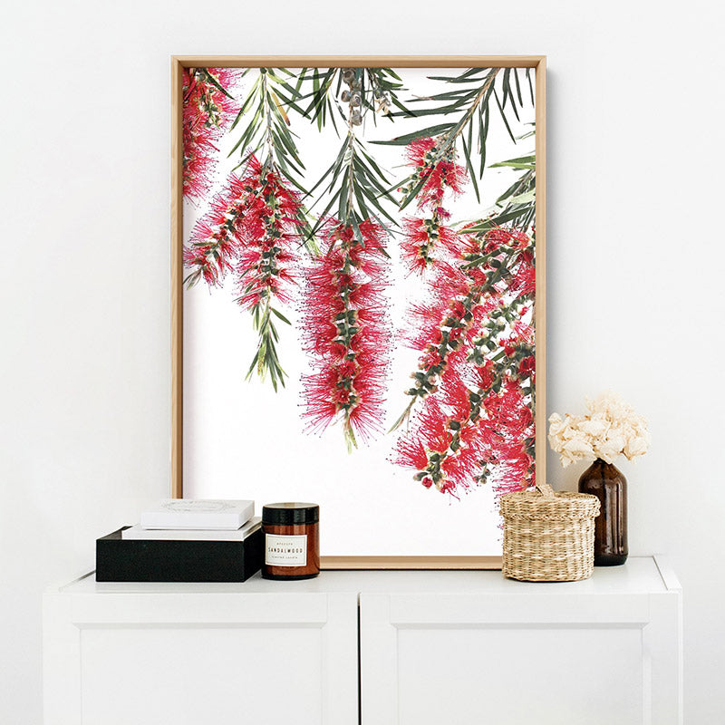 Bottle Brush Flowers I - Art Print, Stretched Canvas or Framed Canvas Wall Art, Shown inside a frame