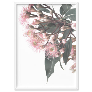 Flowering Eucalyptus Bunch I - Art Print, Stretched Canvas, or Framed Canvas Wall Art