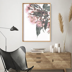 Flowering Eucalyptus Bunch I - Art Print, Stretched Canvas or Framed Canvas Wall Art, Shown inside a frame