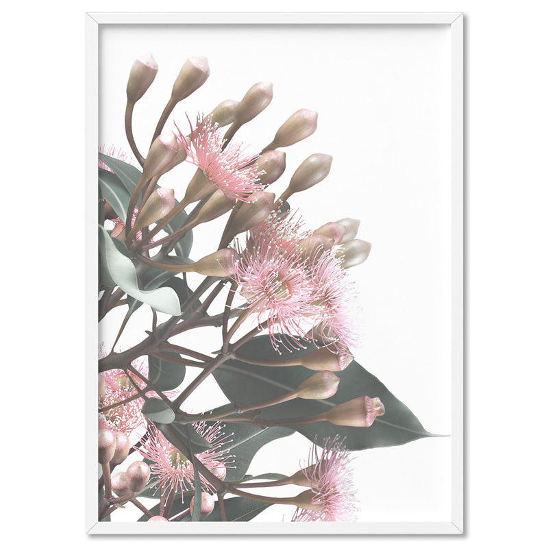 Flowering Eucalyptus Bunch II - Art Print