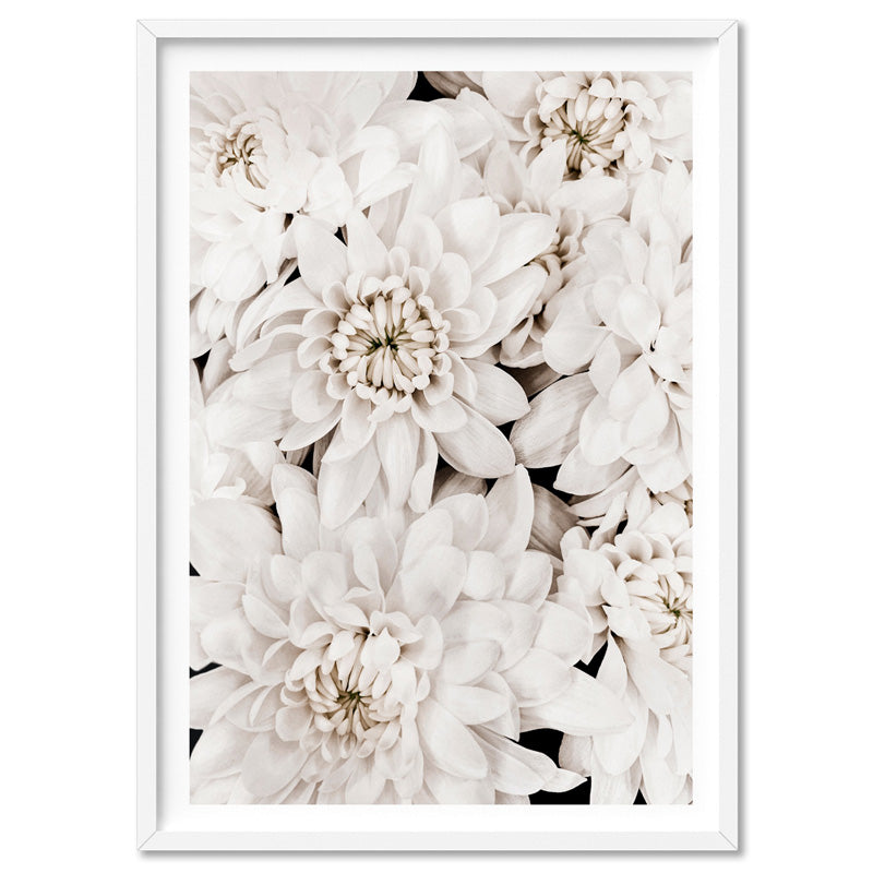 White Dahlias | Sea of Flowers - Art Print