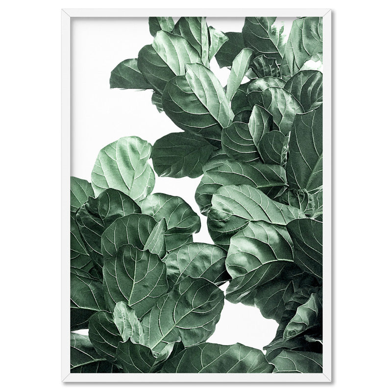 Fiddle Leaf Fig Watercolour II - Art Print, Stretched Canvas, or Framed Canvas Wall Art