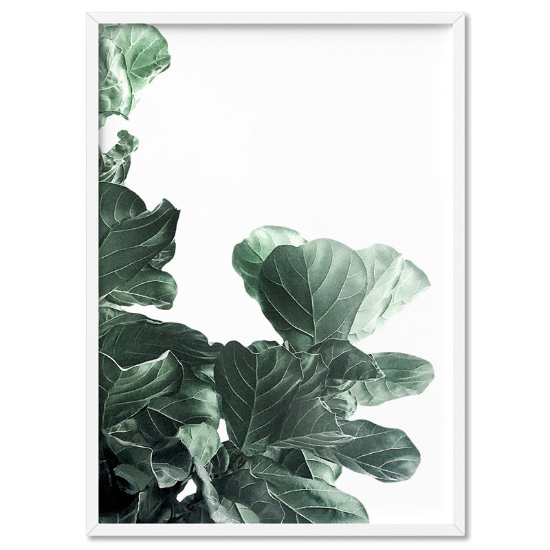 Fiddle Leaf Fig Watercolour III - Art Print, Stretched Canvas, or Framed Canvas Wall Art