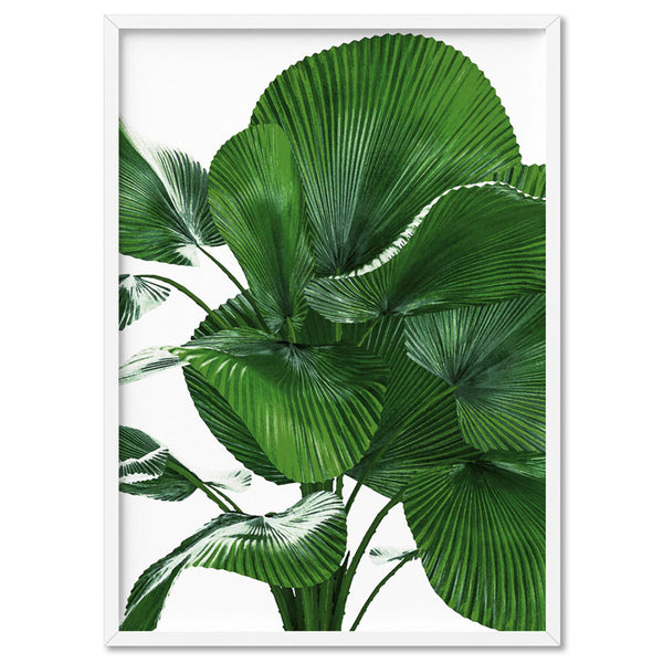 Fan Palm Leaves - Art Print, Stretched Canvas, or Framed Canvas Wall Art