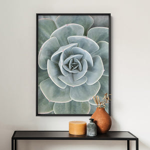 Load image into Gallery viewer, Succulent IV - Art Print