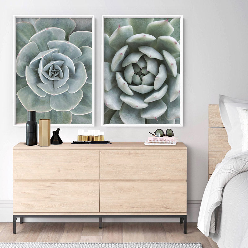 Succulent III - Art Print, Stretched Canvas or Framed Canvas Wall Art, Shown inside a frame