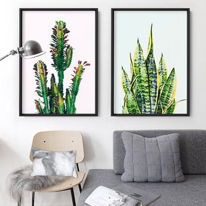 Cactus Succulent Snake Plant - Art Print, Stretched Canvas or Framed Canvas Wall Art, Shown inside a frame