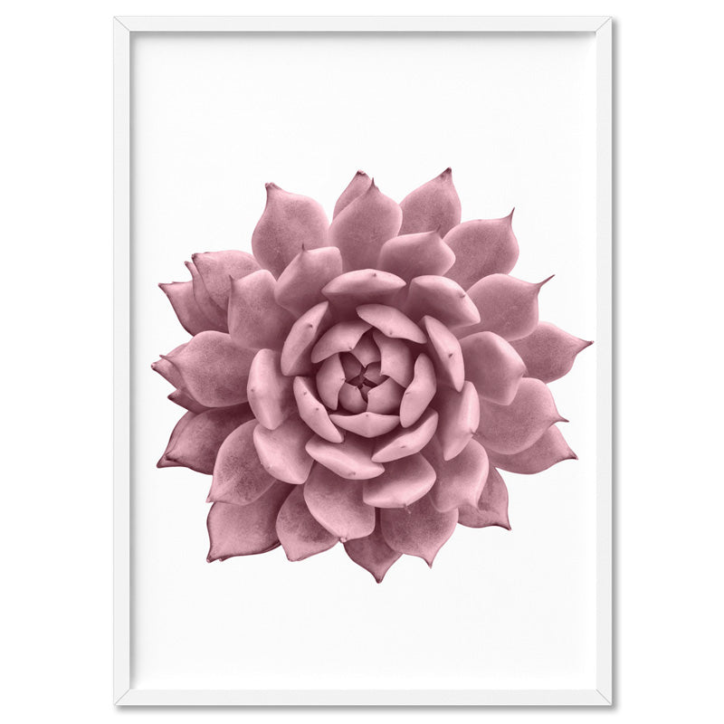 Blush Succulent V1 - Art Print, Stretched Canvas, or Framed Canvas Wall Art