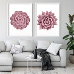 Blush Succulent I - Art Print, Stretched Canvas, or Framed Canvas Wall Art