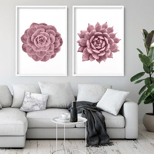 Blush Succulent I - Art Print, Stretched Canvas or Framed Canvas Wall Art, Shown inside a frame
