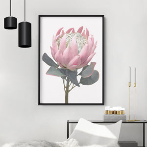 King Protea Vintage Portrait - Art Print