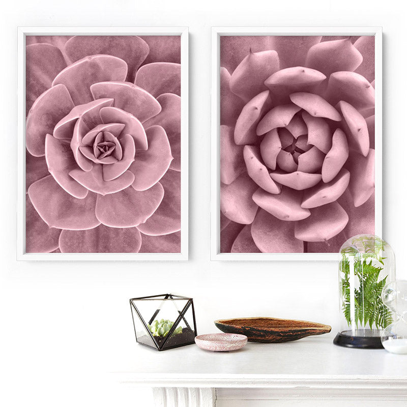 Blush Succulent IV - Art Print, Stretched Canvas or Framed Canvas Wall Art, Shown inside a frame