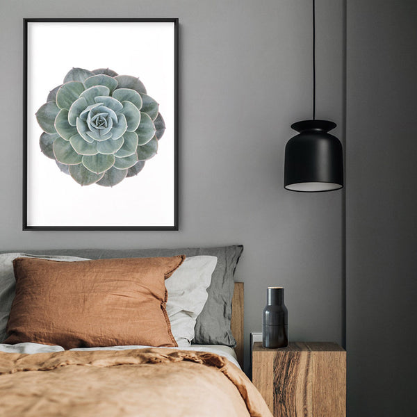 Succulent V2 - Art Print, Stretched Canvas, or Framed Canvas Wall Art