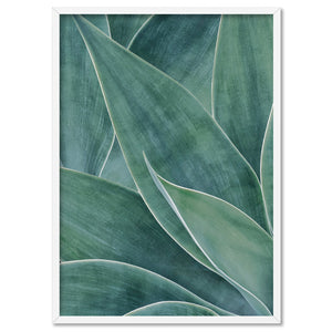 Agave Detail V2 - Art Print, Stretched Canvas, or Framed Canvas Wall Art
