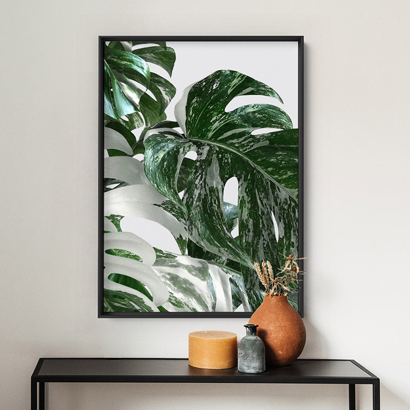 Monstera Variegated Leaves II - Art Print, Stretched Canvas or Framed Canvas Wall Art, Shown inside a frame