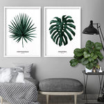 Monstera Scandi Leaf Watercolour (dark green) - Art Print, Stretched Canvas, or Framed Canvas Wall Art
