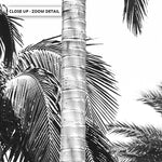 Palms Black & White - Art Print, Stretched Canvas, or Framed Canvas Wall Art