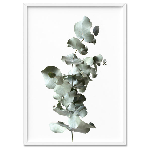 Eucalyptus Leaves III  - Art Print
