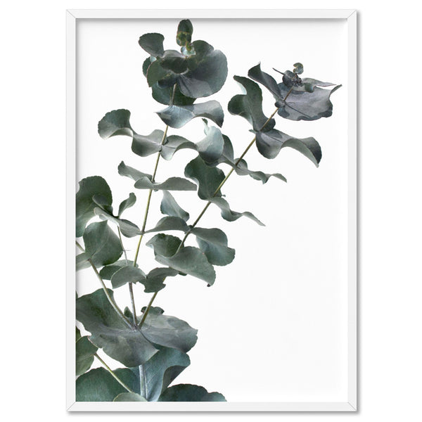 Eucalyptus Gum Leaves IV - Art Print, Stretched Canvas, or Framed Canvas Wall Art
