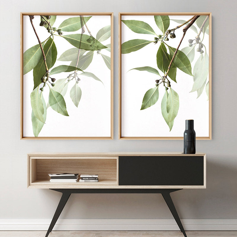 Gumtree Leaves I - Art Print, Stretched Canvas or Framed Canvas Wall Art, Shown inside a frame