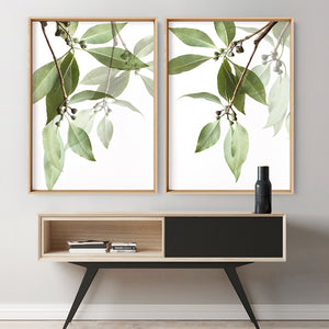 Gumtree Leaves II - Art Print, Stretched Canvas, or Framed Canvas Wall Art