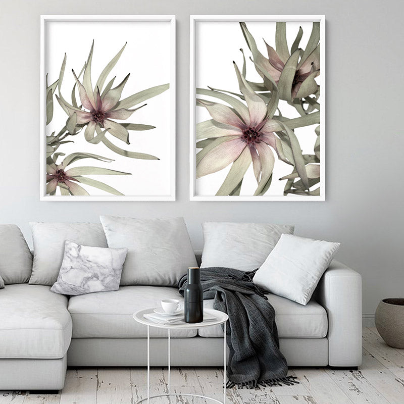 Leucadendron Dried Flowers I - Art Print, Stretched Canvas or Framed Canvas Wall Art, Shown inside a frame
