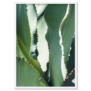 Agave Study I - Art Print, Stretched Canvas, or Framed Canvas Wall Art