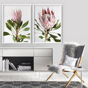 King Protea Portrait - Art Print, Stretched Canvas or Framed Canvas Wall Art, Shown inside a frame