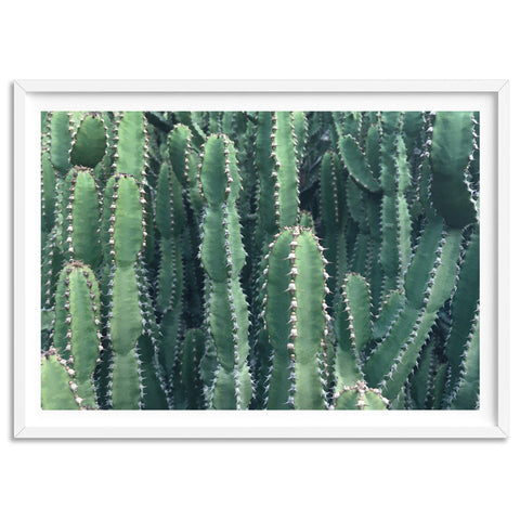 Prickly Cacti Garden - Art Print, Stretched Canvas, or Framed Canvas Wall Art