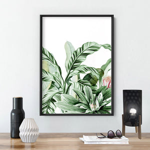 Tropical Sketched Rainforest Leaves & Foliage - Art Print, Stretched Canvas or Framed Canvas Wall Art, Shown inside a frame